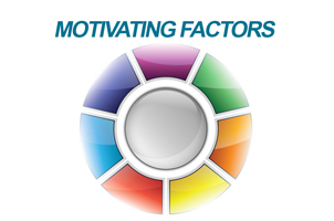 Motivating Factors Index